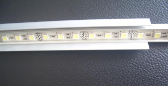 LED Light Showcase