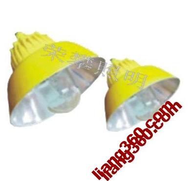 BLC8600 explosion-proof road lights-xian sales